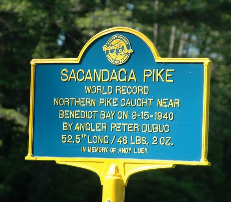 North America Northern Pike Record Plaque